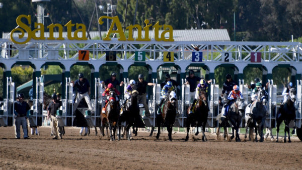 Santa Anita Park Wraps Up Latest Meet Without Any Horse Fatalities – NBC Los Angeles