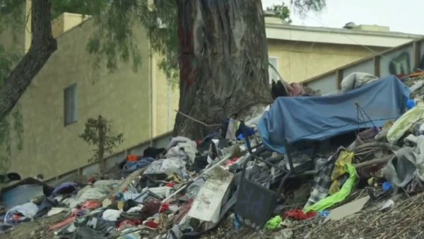 State Begins Clean Up of Tons of Trash on SoCal Freeways, Following I-Team Report – NBC Los Angeles