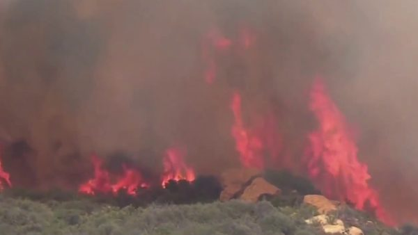 Palisades Brush Fire Rages as Authorities Seek Arson Suspect – NBC Los Angeles